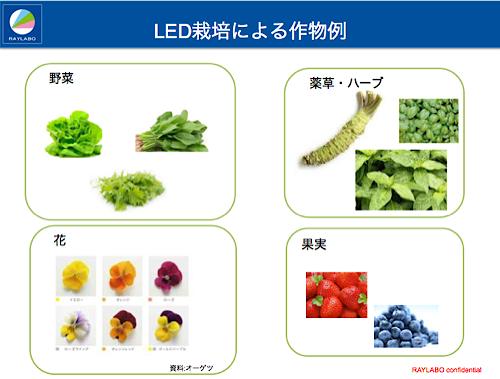 広がる作物,LED型植物工場