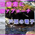 細菌感染における酸化ストレスシグナル制御と感染防御論 平成27年浅川賞受賞論文