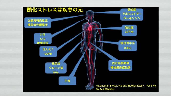 Nrf2がアルツハイマー病を改善、酸化ストレスはアルツハイマー病の原因のひとつ